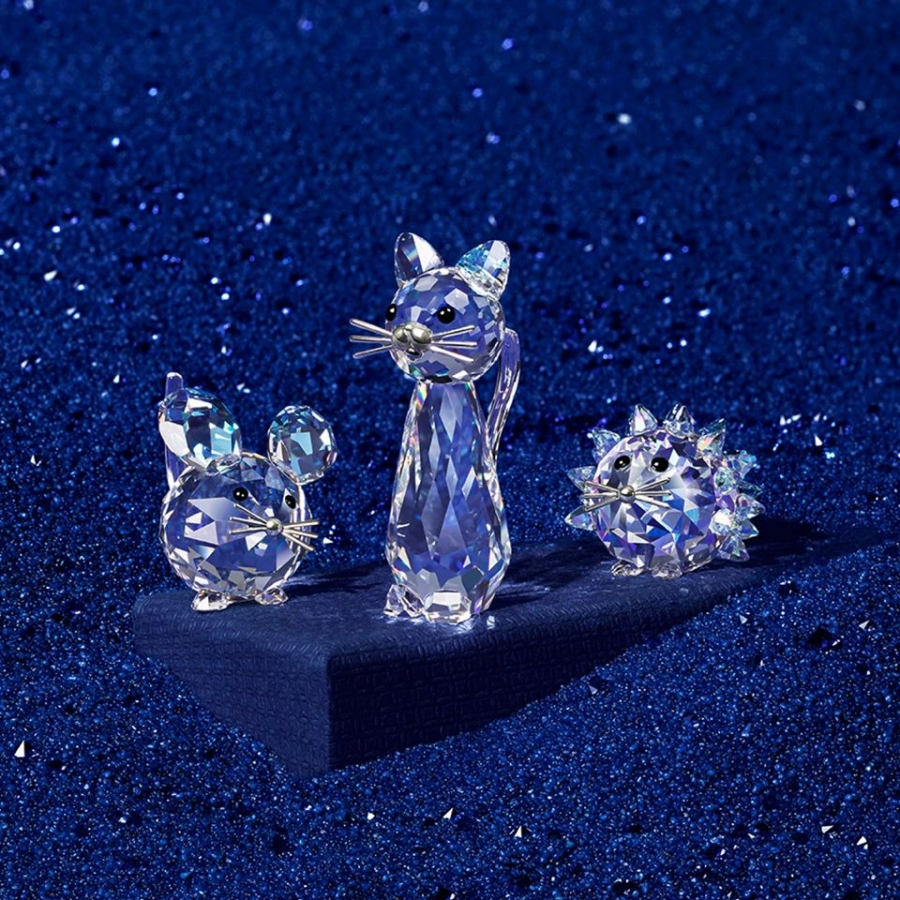 Win a $1000 Swarovski Products Pack