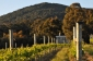 Win a 2-day Getaway (22-23 April 20) for up to 8 people in Mount Macedon VIC (no travel)