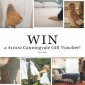 Win a $1000 Canningvale (Bedding & Home Decor) Voucher